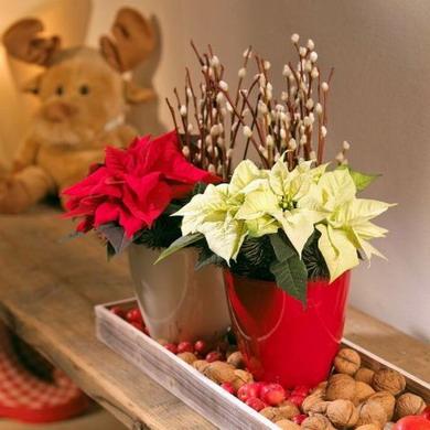 Χριστουγεννιάτικη δεξίωση