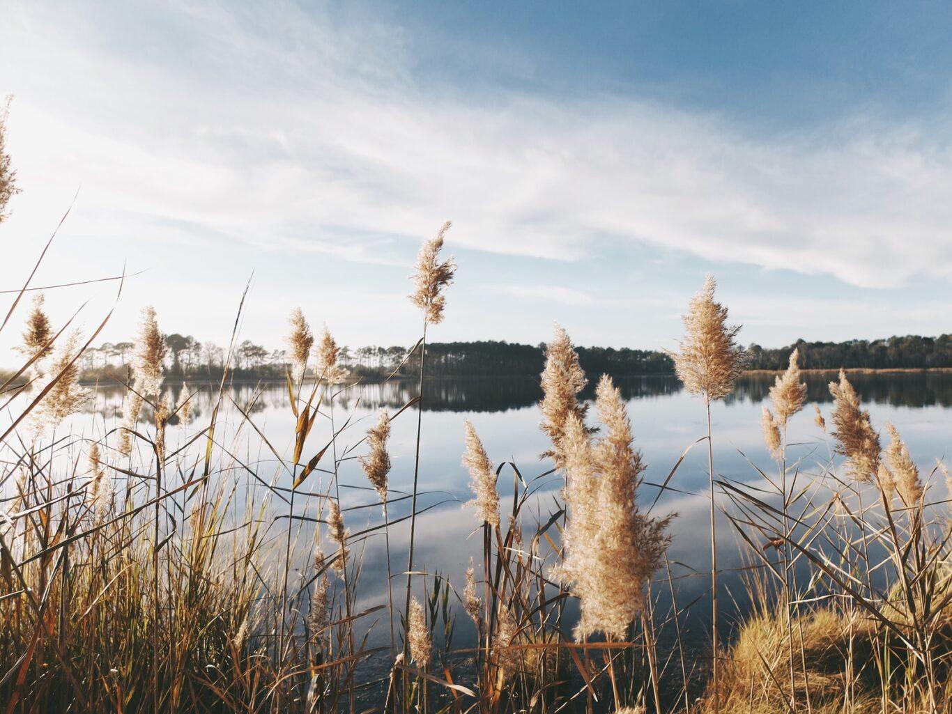 λίμνες κορώνεια και βόλβη
