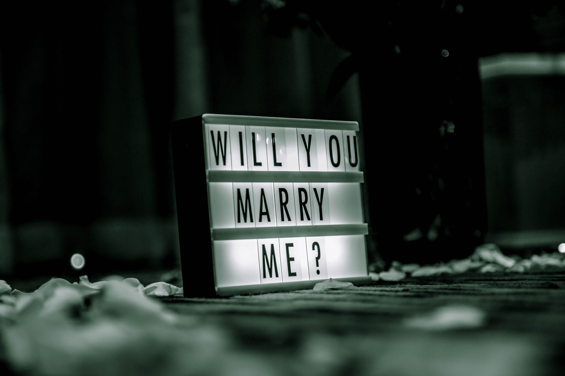 Will You Marry Me? Πείτε το σε stop motion video